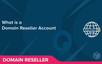 What is a Domain Reseller Account